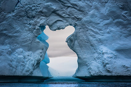Antarctica Photography Workshop